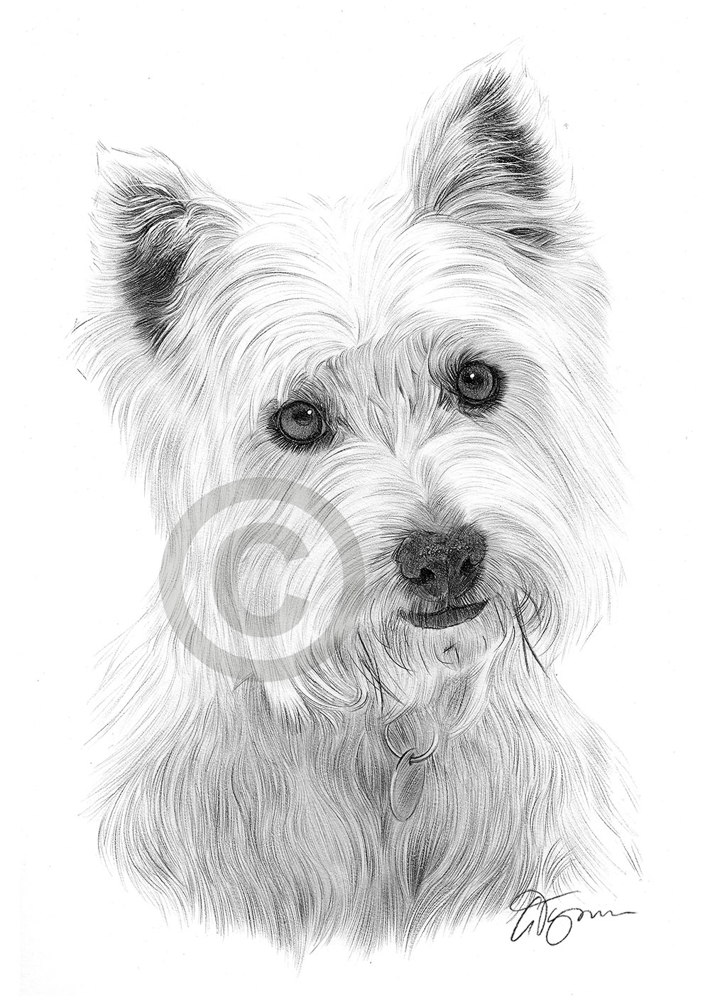 Draw My Dog Uk